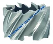 Freza cilindrico-frontala DIN 841 HSS Co